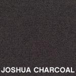 Joshua Charcoal